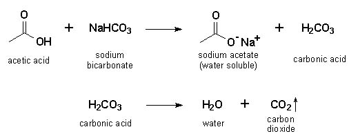 Synthesis of an Ester