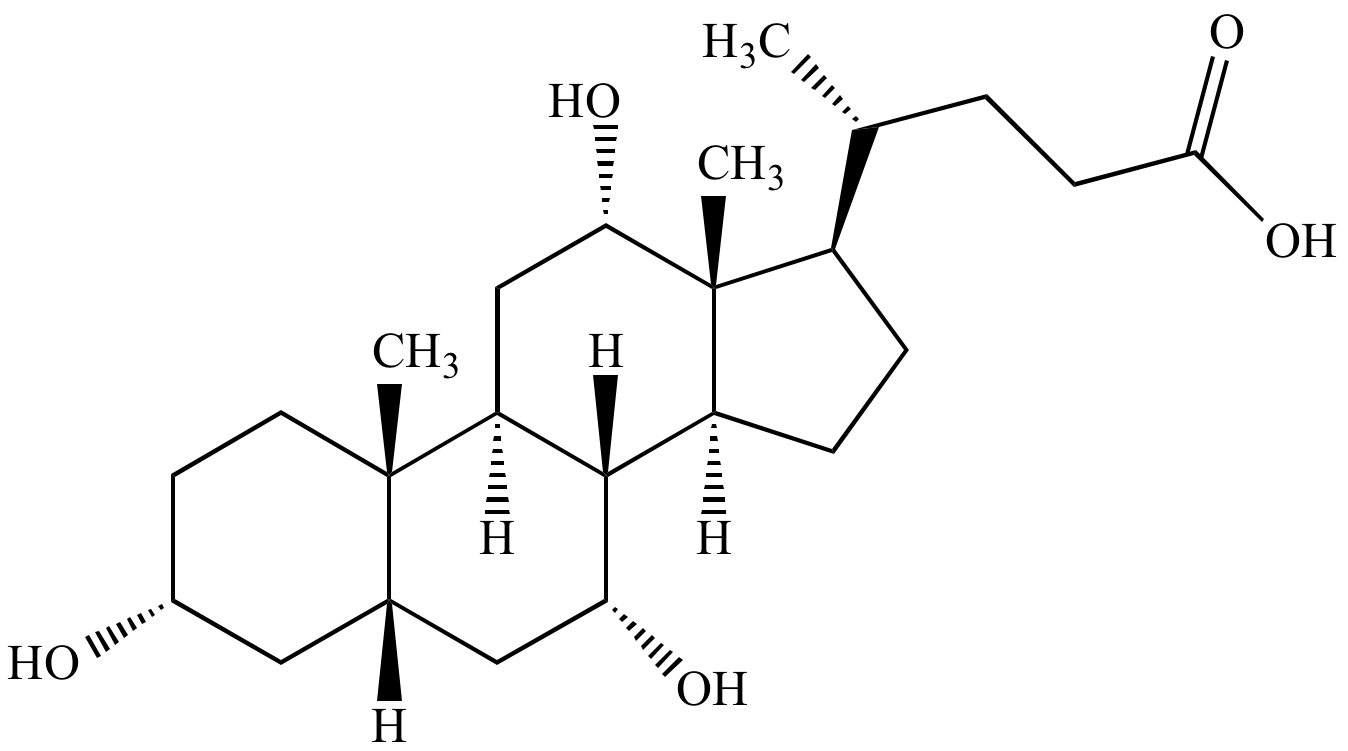steroid structure hydrophilic