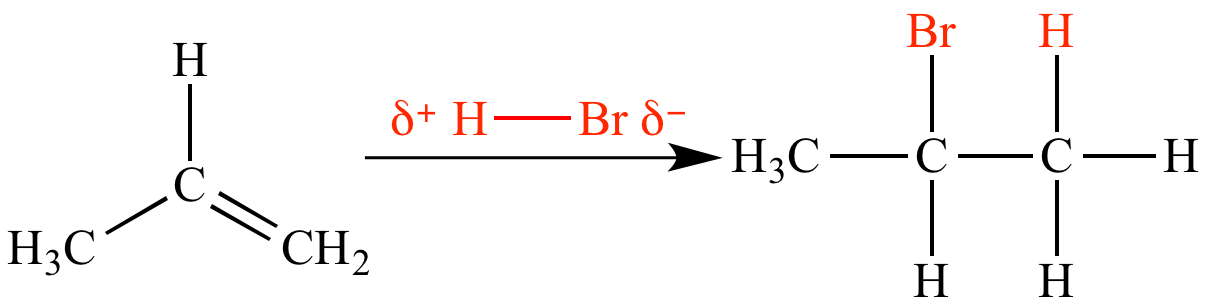 mechanism of bromine addition to alkenes In this case the alkene is the nucleophile, and its homo is the c=c π bond when it reacts with bromine, the alkenes filled π orbital (the homo) will interact with the bromines empty σ orbital to give a product.