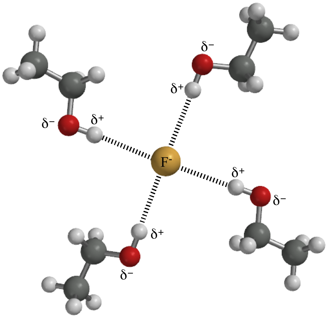 water and bonding A description of covalent bonding in a water molecule.