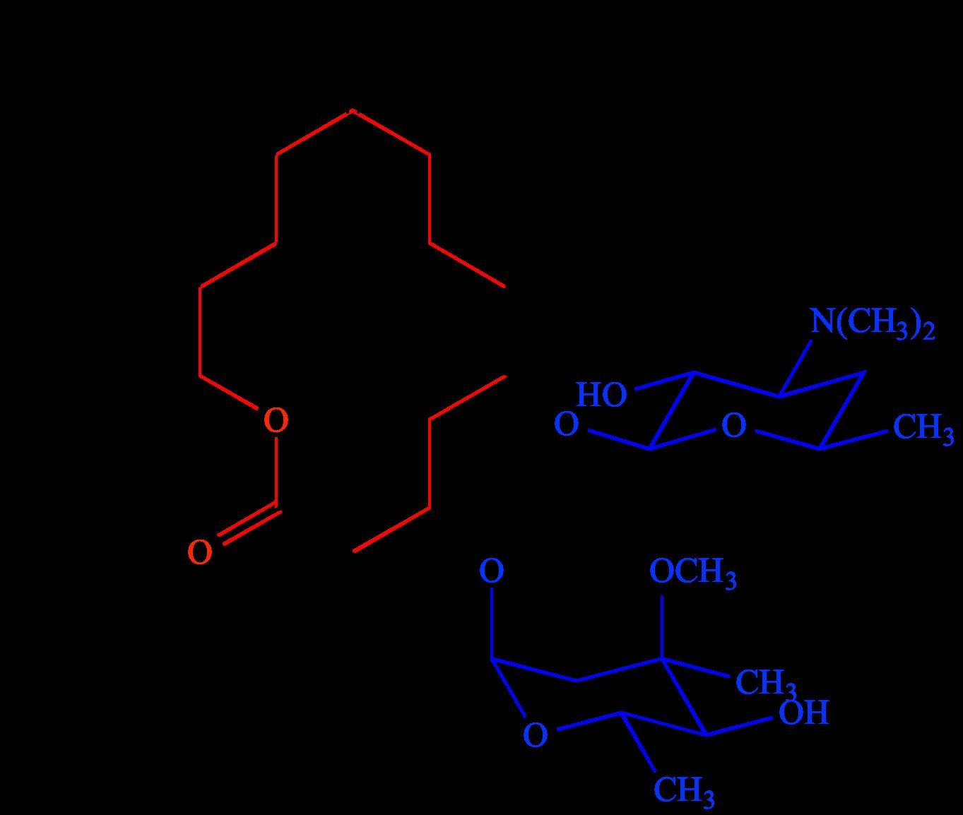 Illustrated Glossary of Organic Chemistry - Macrolide
