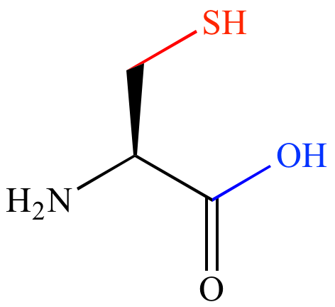 Illustrated Glossary Of Organic Chemistry Sulfhydryl Group