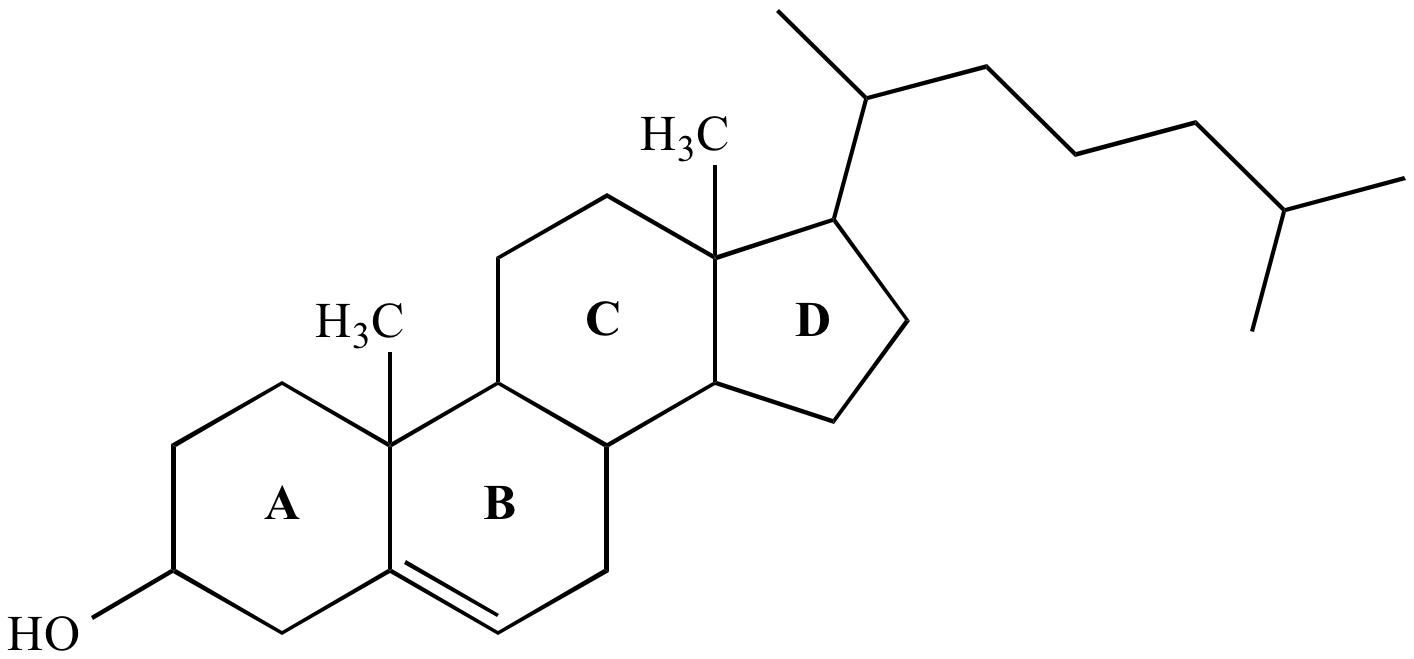 aromatic steroid structure